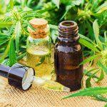 I benefici per il nostro benessere dell'olio CBD